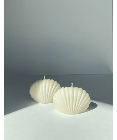 shell candle x2