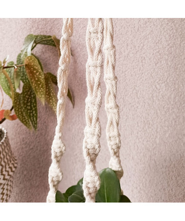 sustainable plant hanger